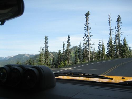 July 3rd on boat and Hurricane Ridge July 4, 2009 058