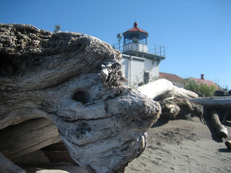 Closeup of log and Point No Point Lighthouse, Hansville, WA 2006