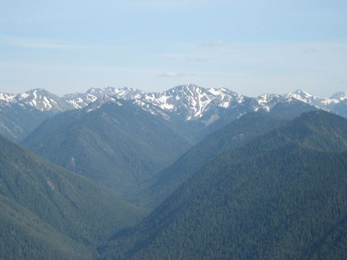 July 3rd on boat and Hurricane Ridge July 4, 2009 077