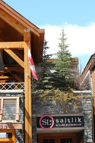 Banff Canada May 1, 2011 115