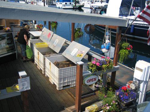 Ashley and Brenna's visit 09 San Juan Islands Friday Harbor 196