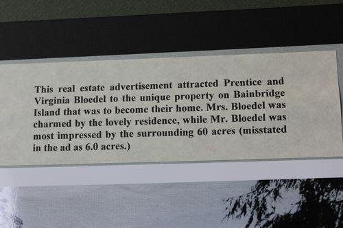Blodel Reserve-1 294