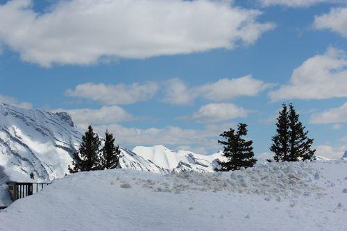 Banff Canada May 1, 2011 292
