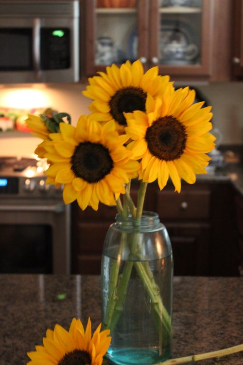 Sunflowers 060
