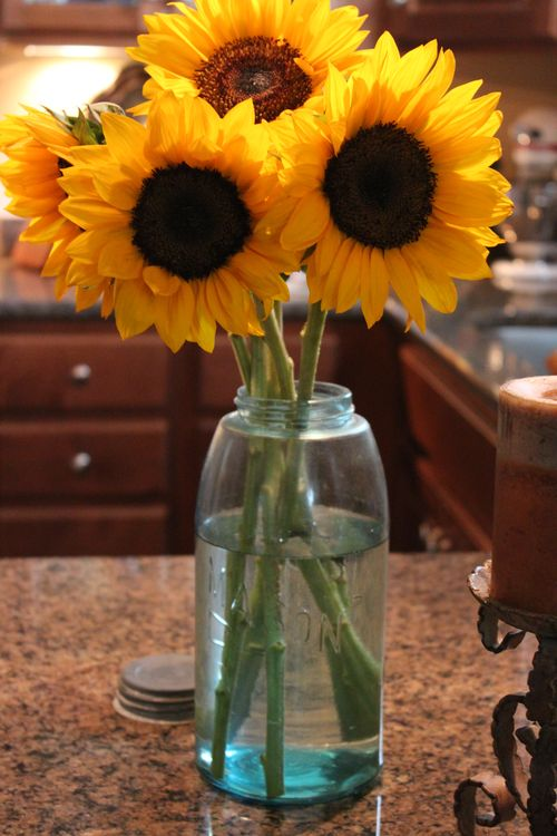 Sunflowers 017
