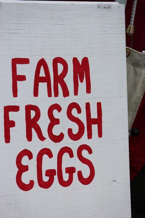 Poulsbo Farmers Market 155