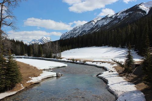 Banff Canada May 1, 2011 489