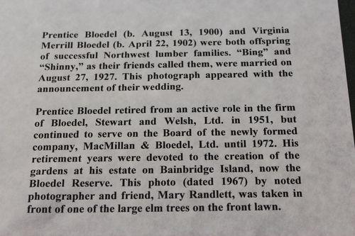 Blodel Reserve-1 289