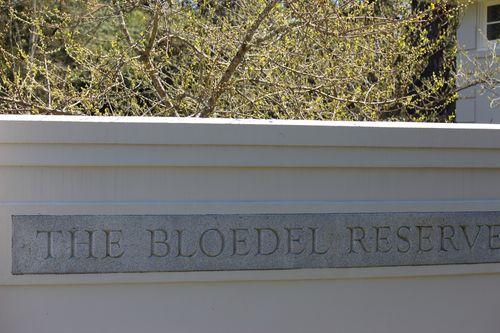 Blodel Reserve-1 027