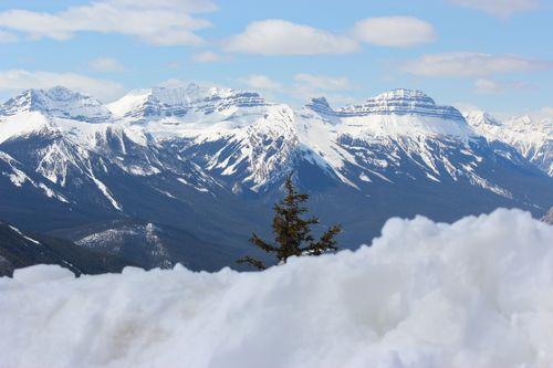 Banff Canada May 1, 2011 298