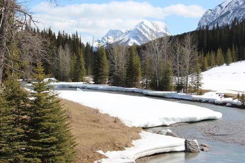 Banff Canada May 1, 2011 490