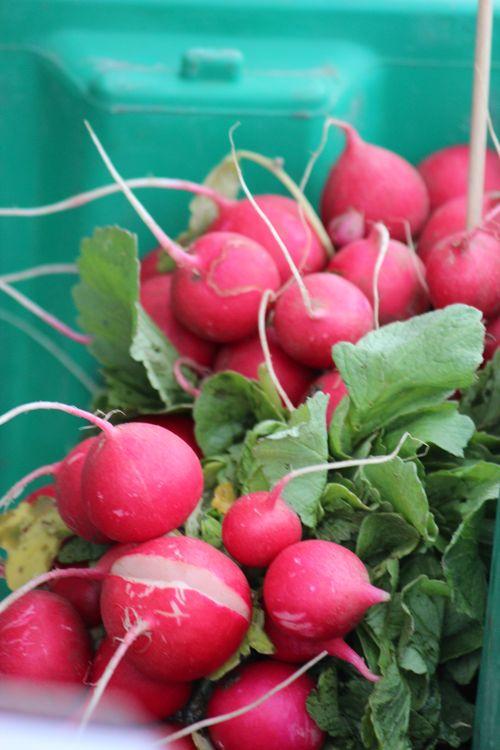 Poulsbo Farmers Market 120
