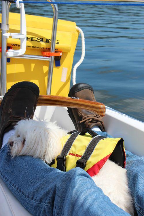 Sailing on LIberty Bay with Mark, Elliott & Sadie Aug. 2011 112