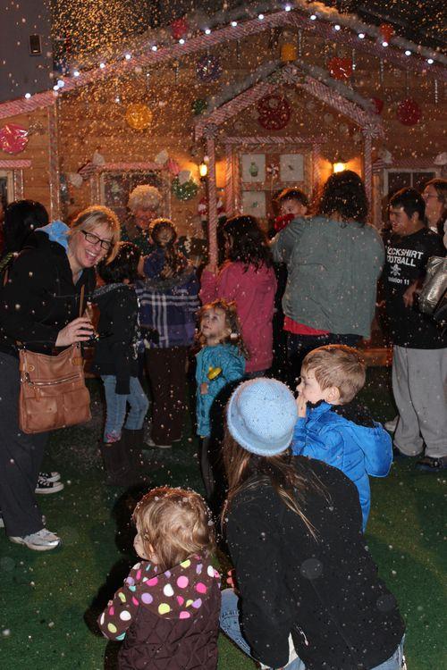 Christmas holiday decor 2011 206