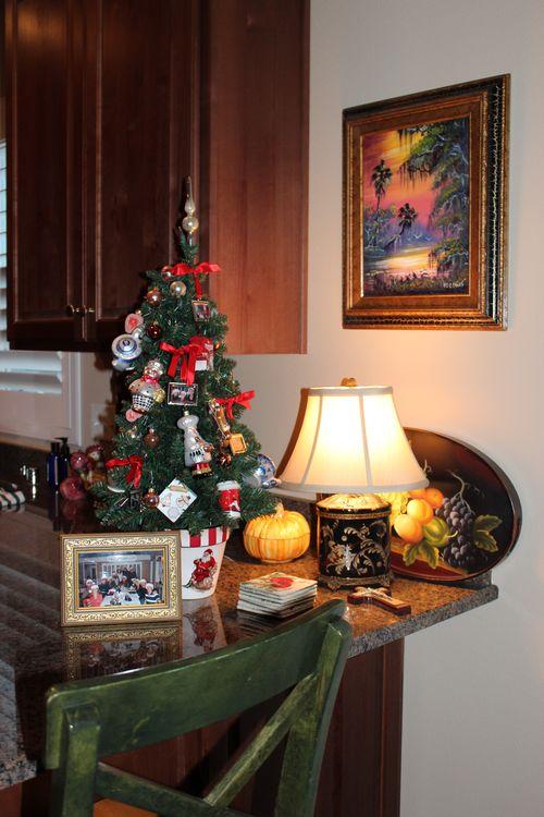 Christmas 2011 049
