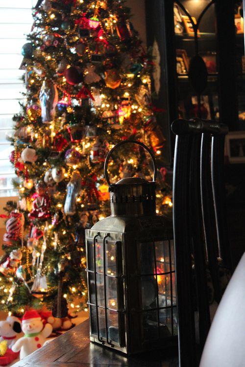 Christmas Day 2011 Poulsbo, WA  (Kim and Mark 56, Elliott 22 yrs 197