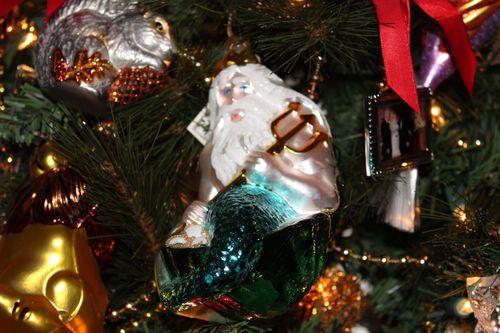 Christmas Day 2011 Poulsbo, WA  (Kim and Mark 56, Elliott 22 yrs 184