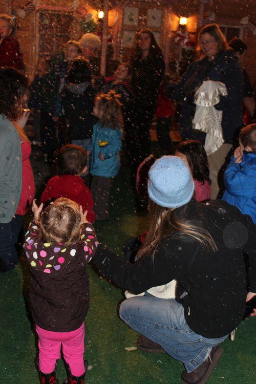 Christmas holiday decor 2011 205