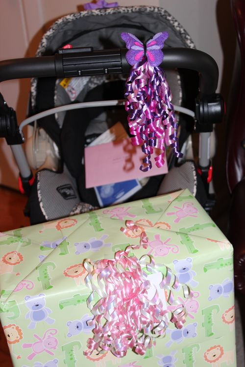 Misc.photos and Baby Shower for Anita and Michael VanBerkom 087