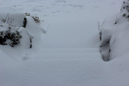 First snow of season Jan. 26, 2012 Poulsbo 056