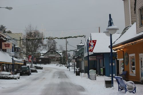 First snow of season Jan. 26, 2012 Poulsbo 038