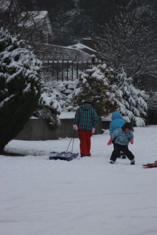 First snow of season Jan. 26, 2012 Poulsbo 066