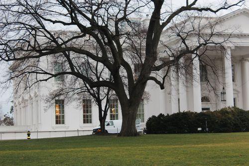 Washington, DC. 2.16.12 and White House 043