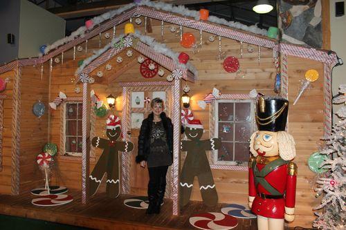 Christmas holiday decor 2011 226