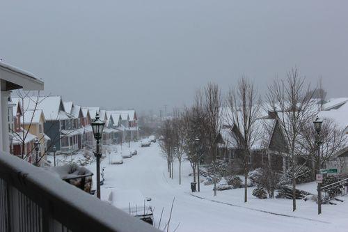 First snow of season Jan. 26, 2012 Poulsbo 054