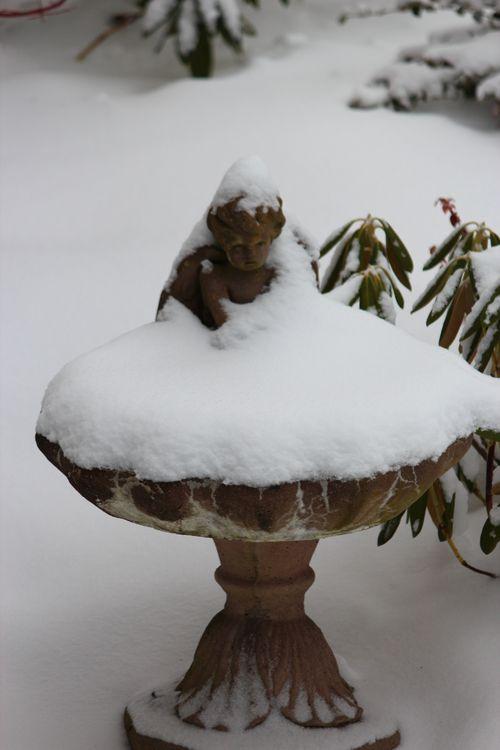 First snow of season Jan. 26, 2012 Poulsbo 019