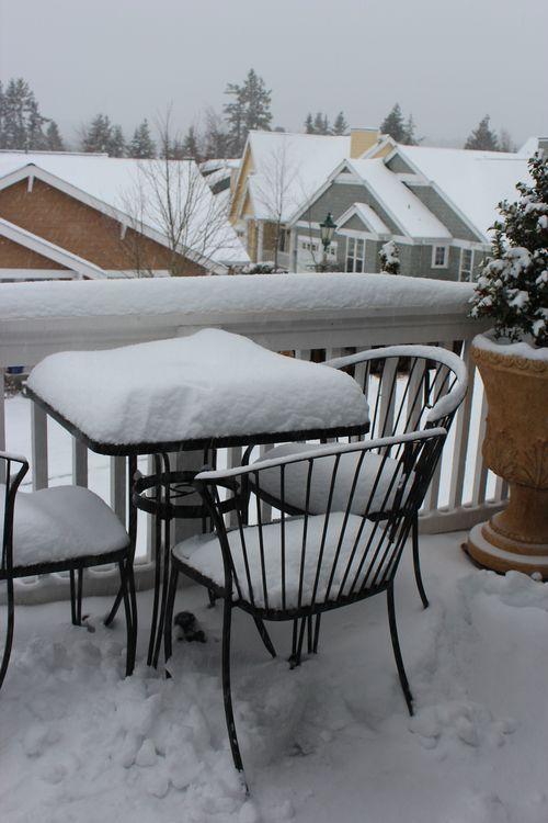 First snow of season Jan. 26, 2012 Poulsbo 084