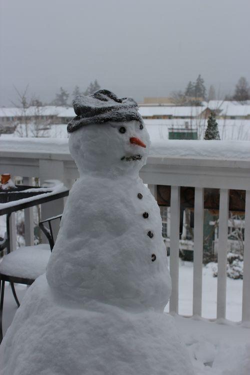 First snow of season Jan. 26, 2012 Poulsbo 088