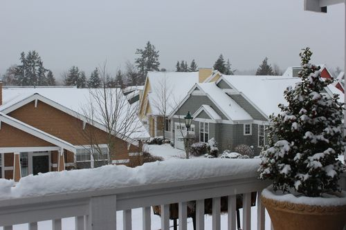 First snow of season Jan. 26, 2012 Poulsbo 128