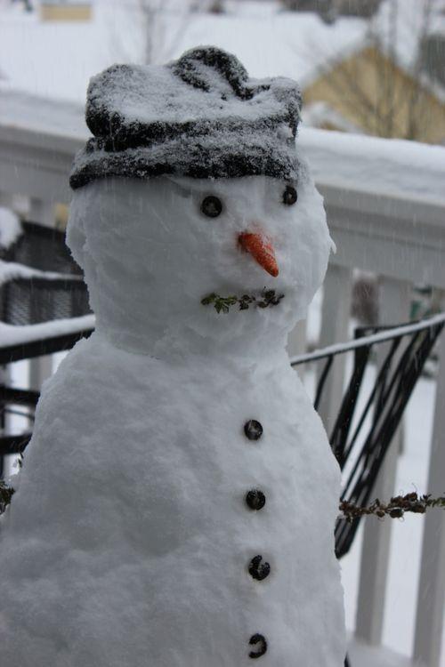 First snow of season Jan. 26, 2012 Poulsbo 115