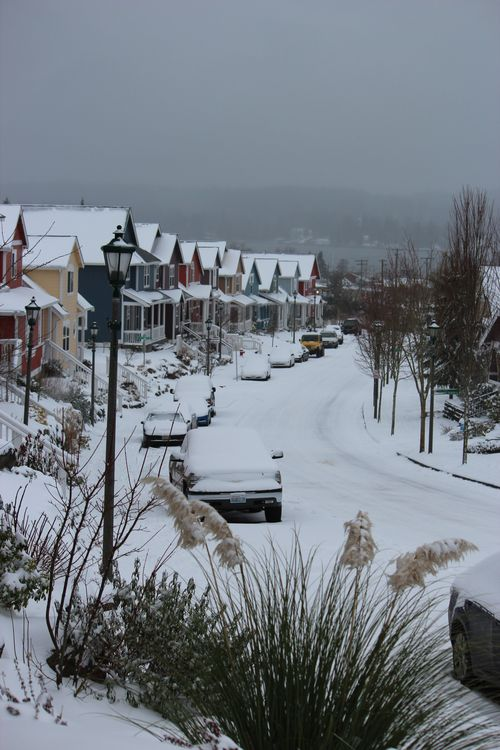 First snow of season Jan. 26, 2012 Poulsbo 010