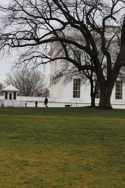 Washington, DC. 2.16.12 and White House 087
