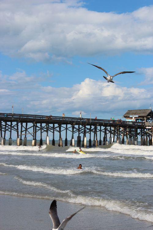 Cocoa Beach, Florida  April 2012 168