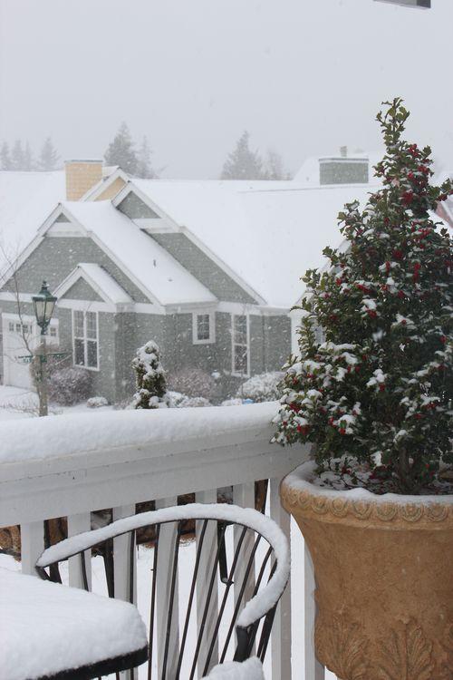 First snow of season Jan. 26, 2012 Poulsbo 004