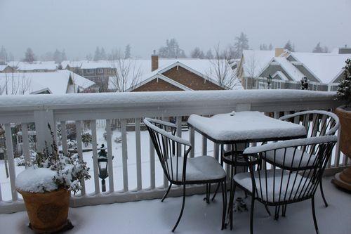 First snow of season Jan. 26, 2012 Poulsbo 006