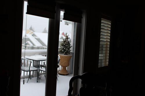 First snow of season Jan. 26, 2012 Poulsbo 023