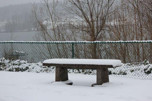 First snow of season Jan. 26, 2012 Poulsbo 063