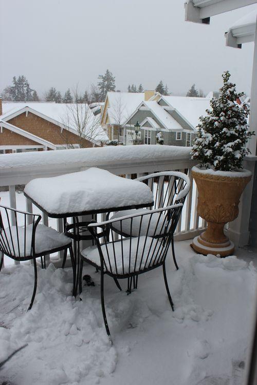 First snow of season Jan. 26, 2012 Poulsbo 087