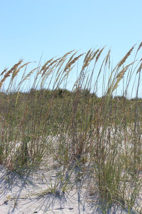 Cocoa Beach April 2012 098