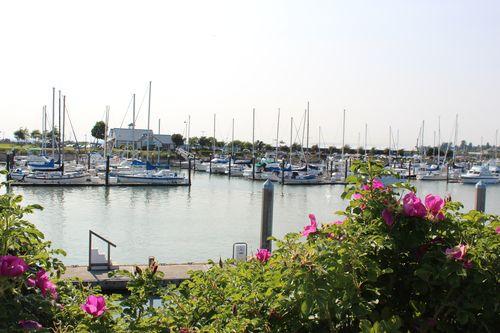 Bellingham, WA July 7, 2012 055