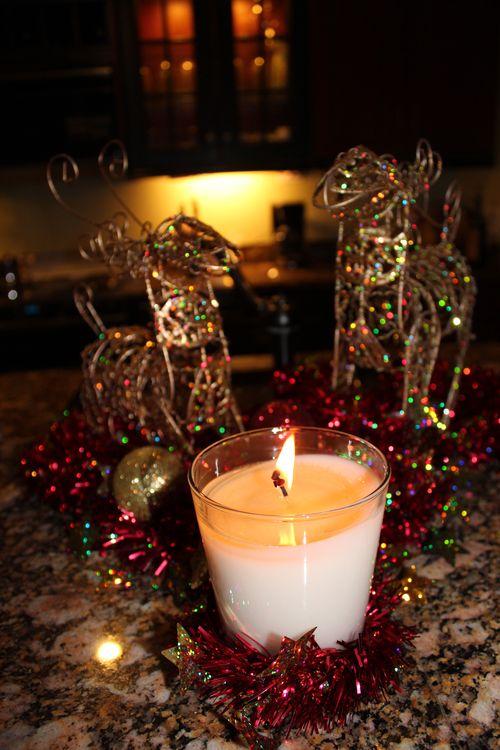 Christmas in Florida 2012 140
