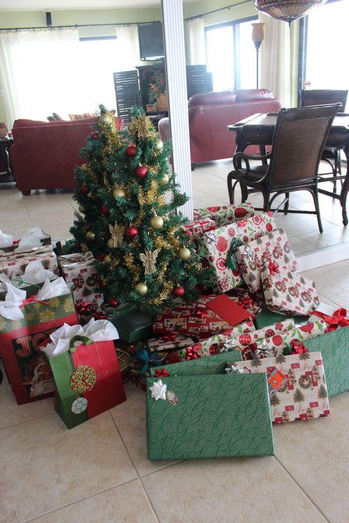 Christmas in Florida 2012 206